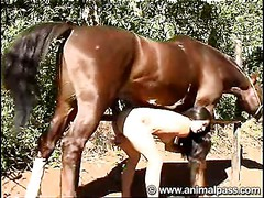 Brazilian slut having horse sex