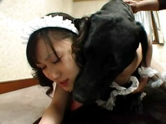 Asian slut forced to mate with a dog
